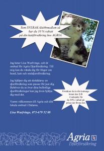 annons katt 140312